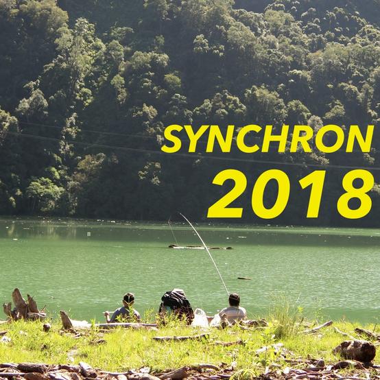 Synchron2018
